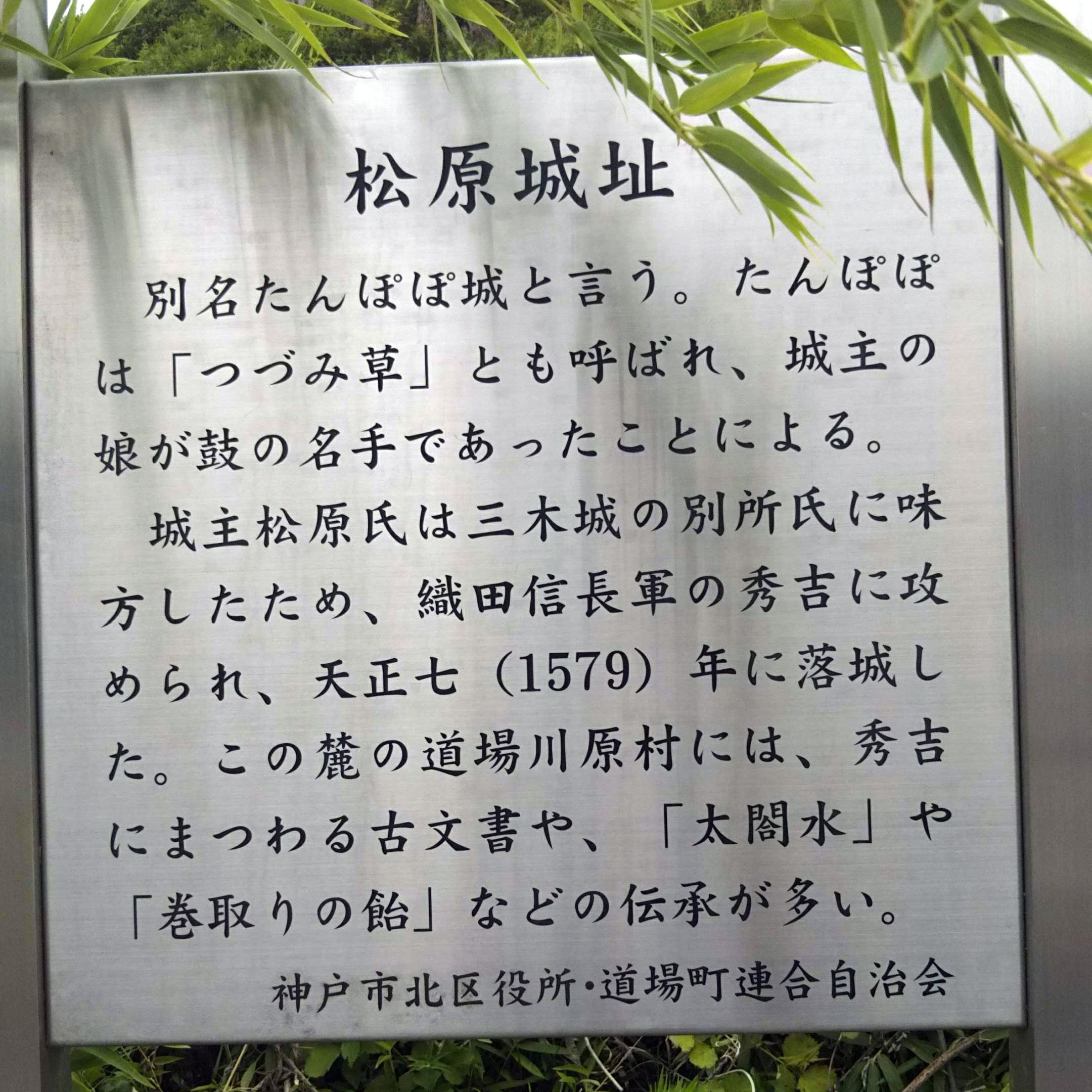 松原城(たんぽぽ城)址案内板